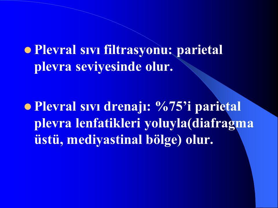 Plevral sıvı filtrasyonu: parietal plevra seviyesinde olur. Plevral sıvı drenajı: %75'i parietal plevra lenfatikleri yoluyla(diafragma üstü, mediyasti