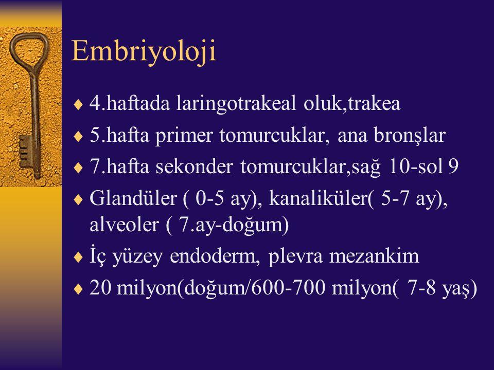 Embriyoloji  4.haftada laringotrakeal oluk,trakea  5.hafta primer tomurcuklar, ana bronşlar  7.hafta sekonder tomurcuklar,sağ 10-sol 9  Glandüler