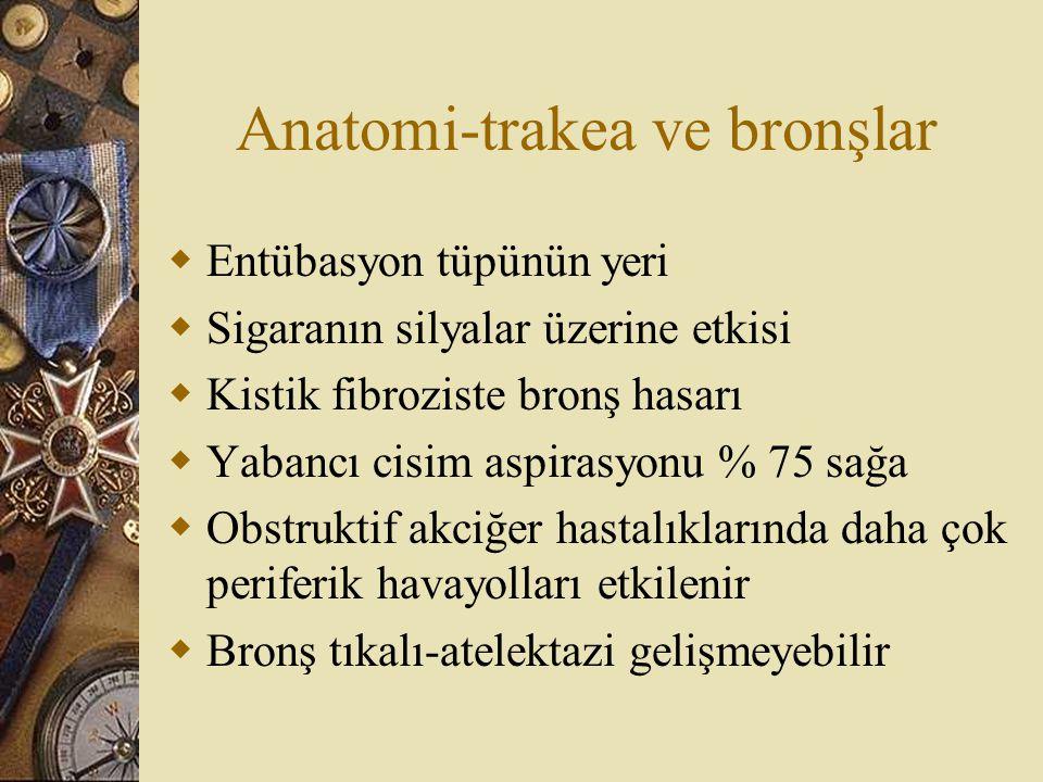 Anatomi-trakea ve bronşlar  Entübasyon tüpünün yeri  Sigaranın silyalar üzerine etkisi  Kistik fibroziste bronş hasarı  Yabancı cisim aspirasyonu