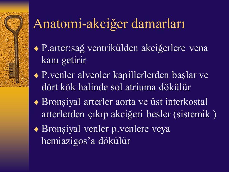 Anatomi-akciğer damarları  P.arter:sağ ventrikülden akciğerlere vena kanı getirir  P.venler alveoler kapillerlerden başlar ve dört kök halinde sol a
