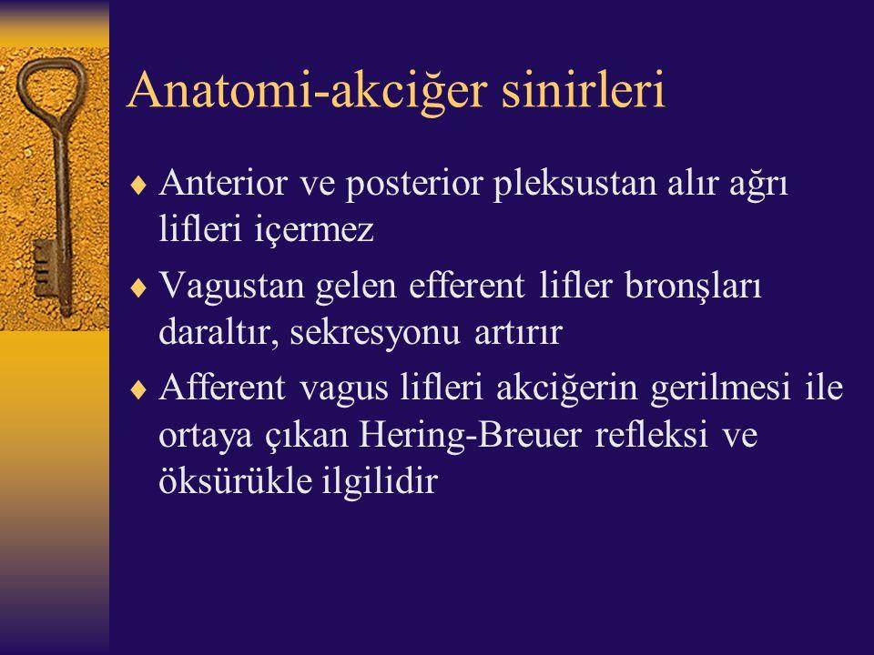 Anatomi-akciğer sinirleri  Anterior ve posterior pleksustan alır ağrı lifleri içermez  Vagustan gelen efferent lifler bronşları daraltır, sekresyonu