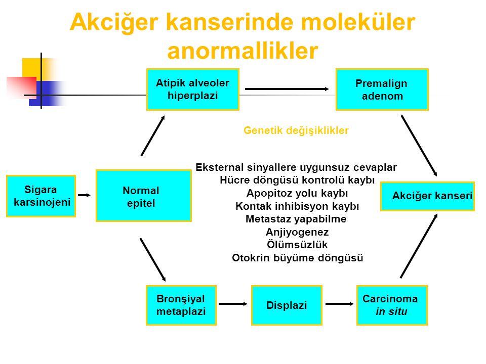 Akciğer kanserinde moleküler anormallikler Genetik değişiklikler Sigara karsinojeni Eksternal sinyallere uygunsuz cevaplar Hücre döngüsü kontrolü kaybı Apopitoz yolu kaybı Kontak inhibisyon kaybı Metastaz yapabilme Anjiyogenez Ölümsüzlük Otokrin büyüme döngüsü Atipik alveoler hiperplazi Premalign adenom Akciğer kanseri Carcinoma in situ Displazi Bronşiyal metaplazi Normal epitel