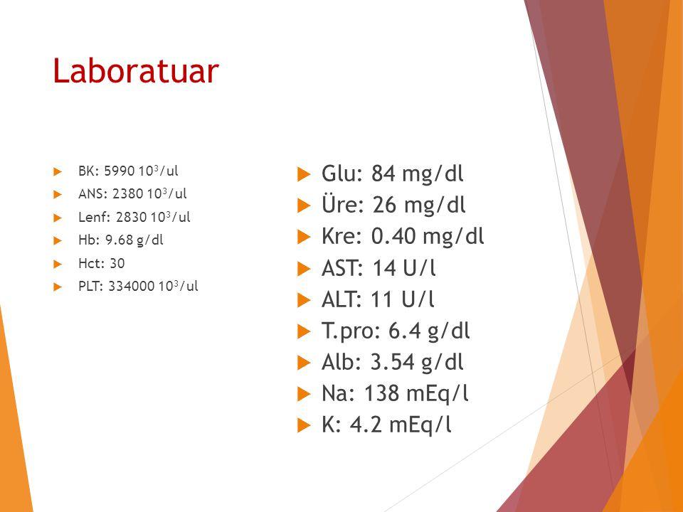 Laboratuar  BK: 5990 10 3 /ul  ANS: 2380 10 3 /ul  Lenf: 2830 10 3 /ul  Hb: 9.68 g/dl  Hct: 30  PLT: 334000 10 3 /ul  Glu: 84 mg/dl  Üre: 26 m
