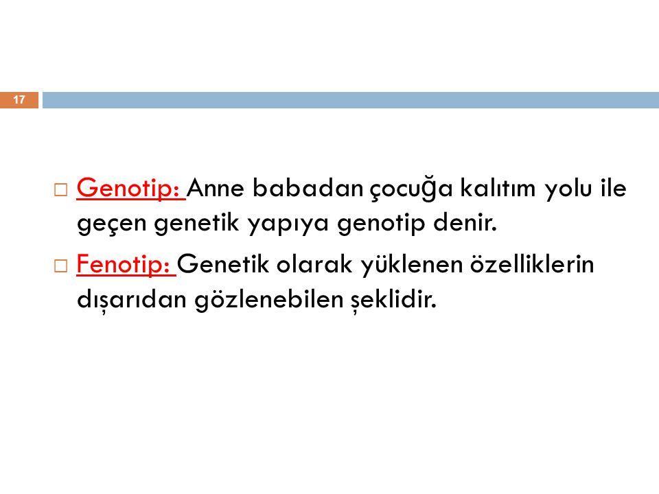  Genotip: Anne babadan çocu ğ a kalıtım yolu ile geçen genetik yapıya genotip denir.