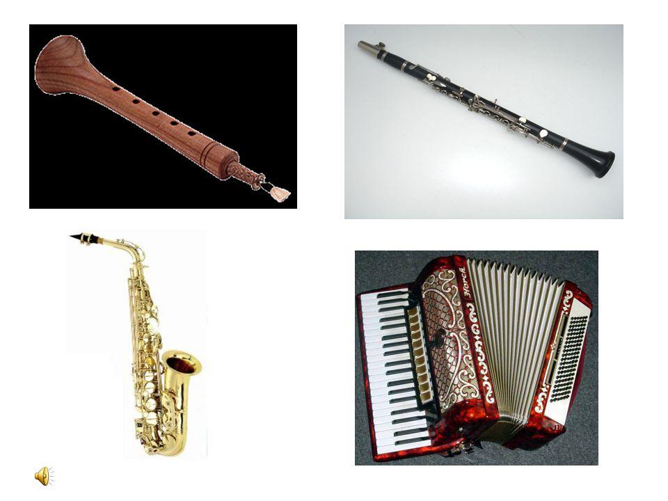 2- Nefesli müzik âletleri: Bunların bir ucundan doğrudan doğruya ya da uygun bir ağızlıkla üfleyerek borunun içindeki hava titreştirilir. Ses boruları