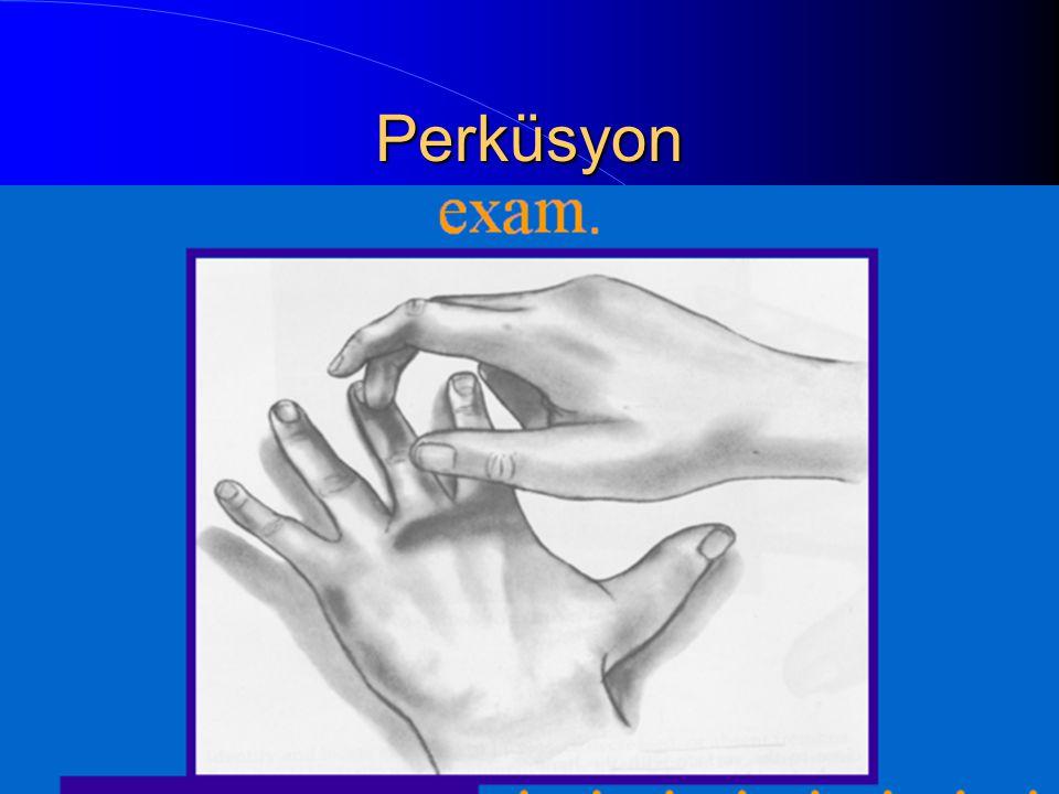 PERKÜSYON