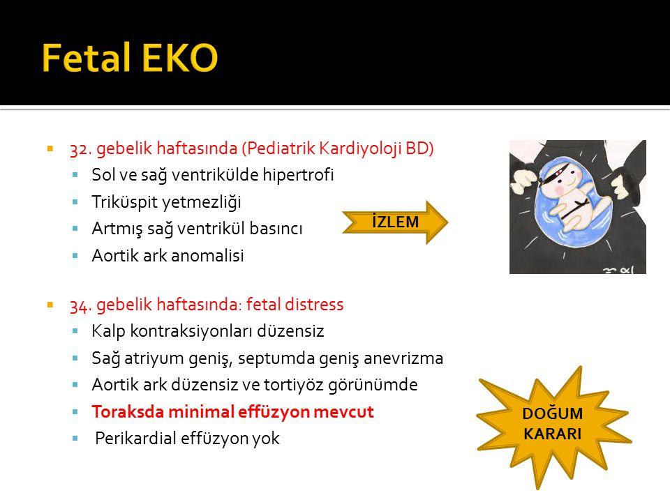  Hidrops fetalis tanısı nedeniyle doğum salonunda  O Rh(-) ES  Göbek kateteri  Pararasentez hazırlığı ile doğuma girildi  Solunumu olmayan, bradikardik, hipotonik bebek entübe edildi ve PPV uygulandı  Apgar skoru  1.
