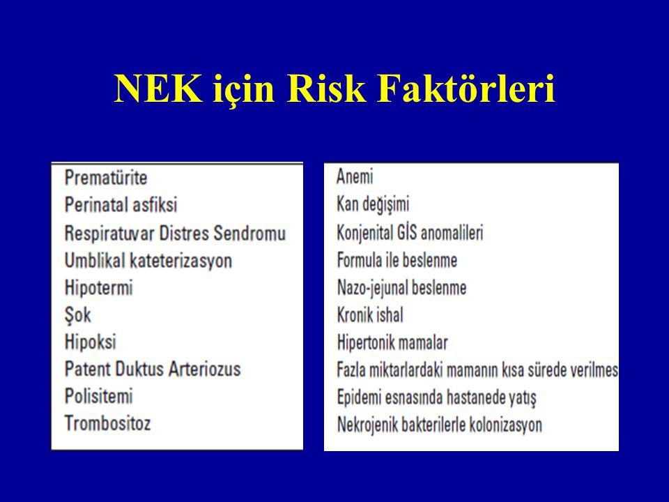 NEK için Risk Faktörleri
