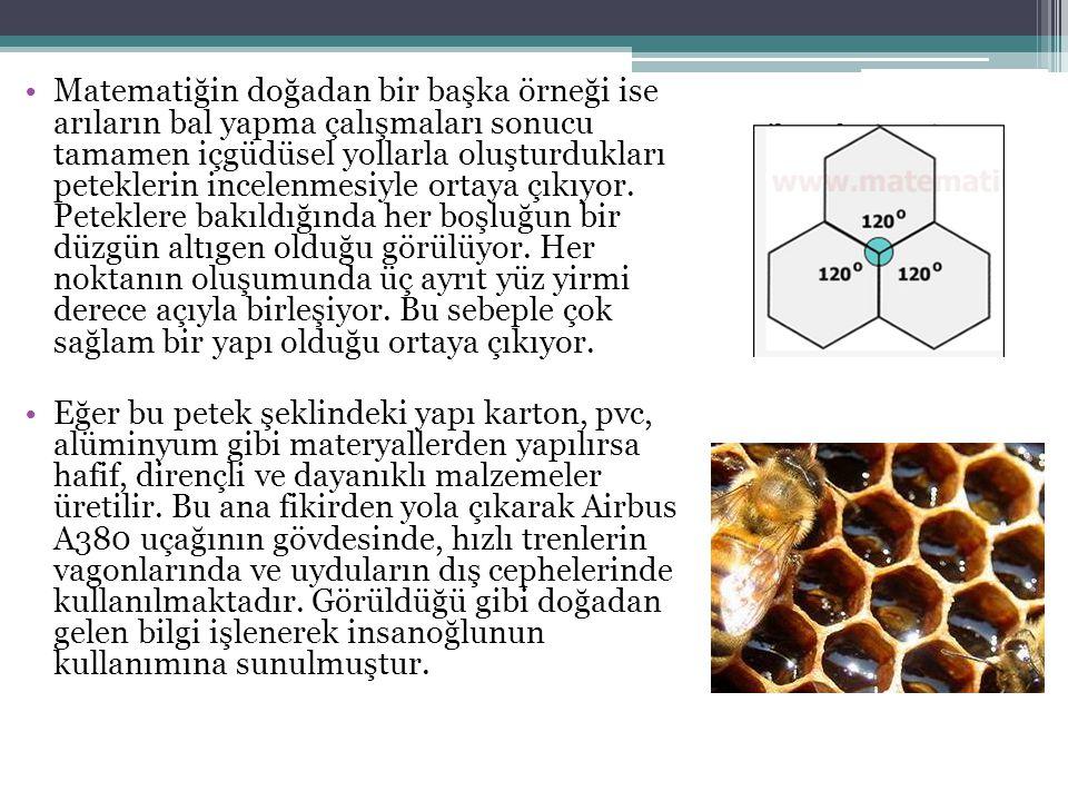 Matematiğin doğadan bir başka örneği ise arıların bal yapma çalışmaları sonucu tamamen içgüdüsel yollarla oluşturdukları peteklerin incelenmesiyle ort