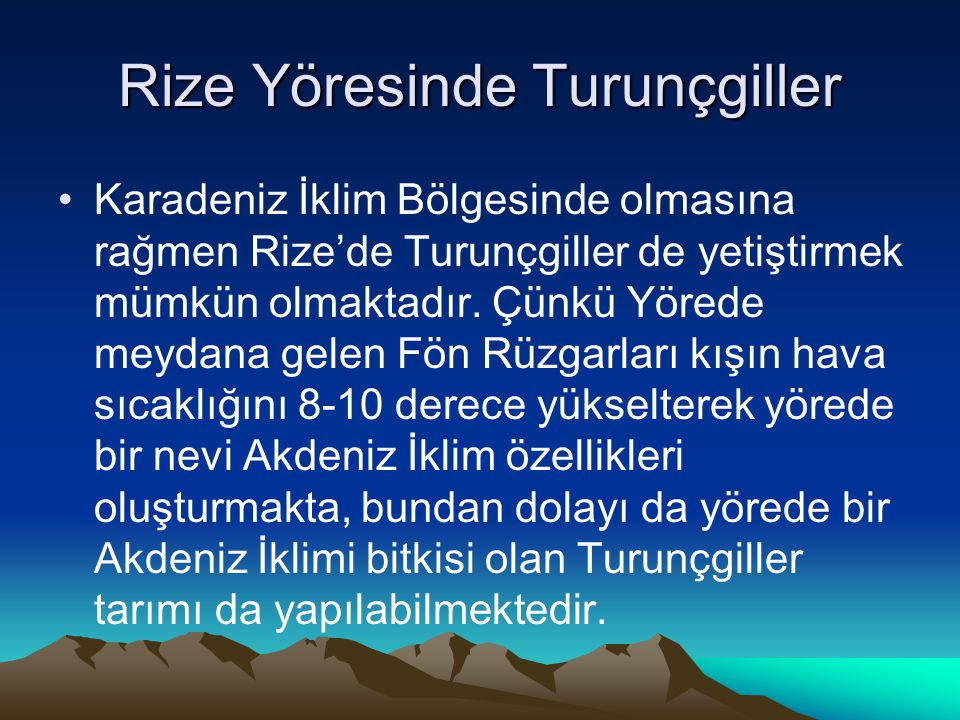Rize Yöresinde Turunçgiller Karadeniz İklim Bölgesinde olmasına rağmen Rize'de Turunçgiller de yetiştirmek mümkün olmaktadır. Çünkü Yörede meydana gel