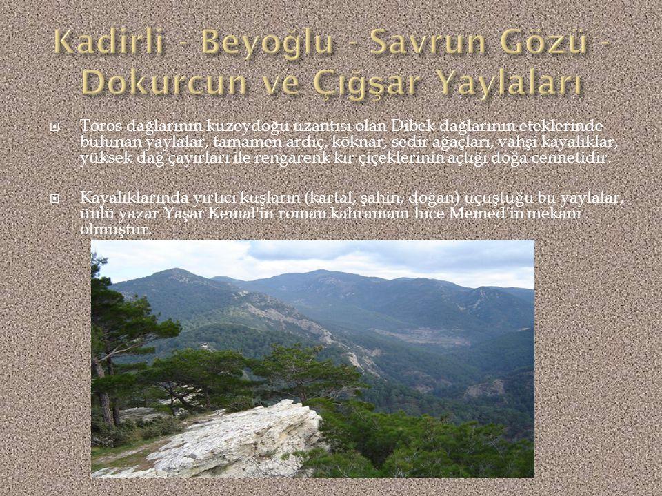  Kadirli ilçesine bağlı birçok köy ve orman içinden geçen güzel manzaralı 57 km.