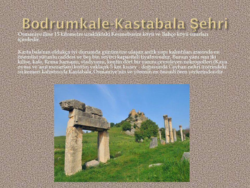 Kadirlinin güneydoğusunda olup ilçeye 22 kilometre, Osmaniye'ye 30 kilometre, Adana'ya ise 130 kilometre uzaklıktadır. Tepenin zirvesinde, saray olduğ