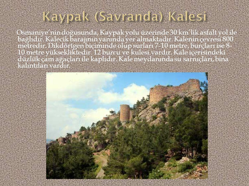 Kale ilk çağlarda Çukurova'yı Suriye'ye bağlayan Amanos/Demirkapı geçidini kontrol altında tutmak amacıyla inşa edilmiştir.