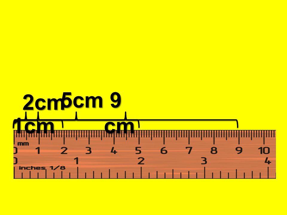 1cm 1cm 2cm 2cm 5cm 5cm 9 cm 9 cm