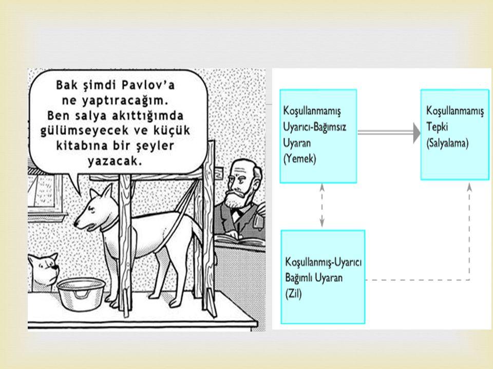   Gerçek ya da hayali olan bir olayın öğrenciler tarafından ayrıntılı bir şekilde incelenmesine örnek olay incelemesi denir.