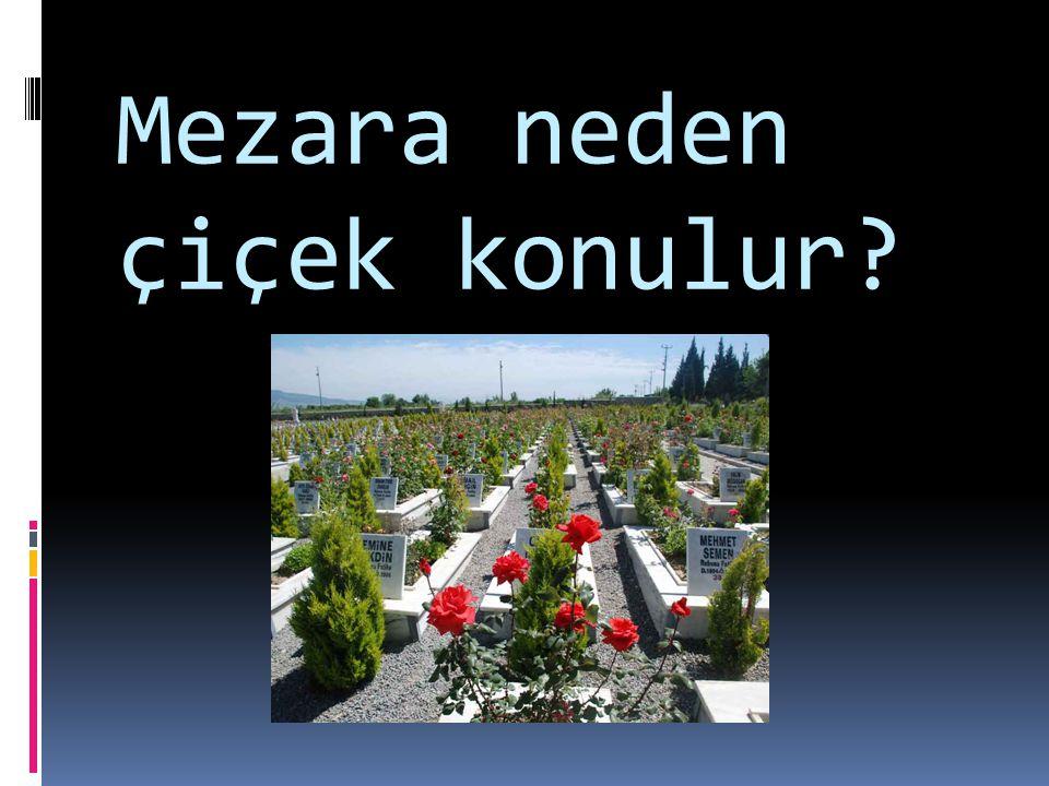 Mezara neden çiçek konulur