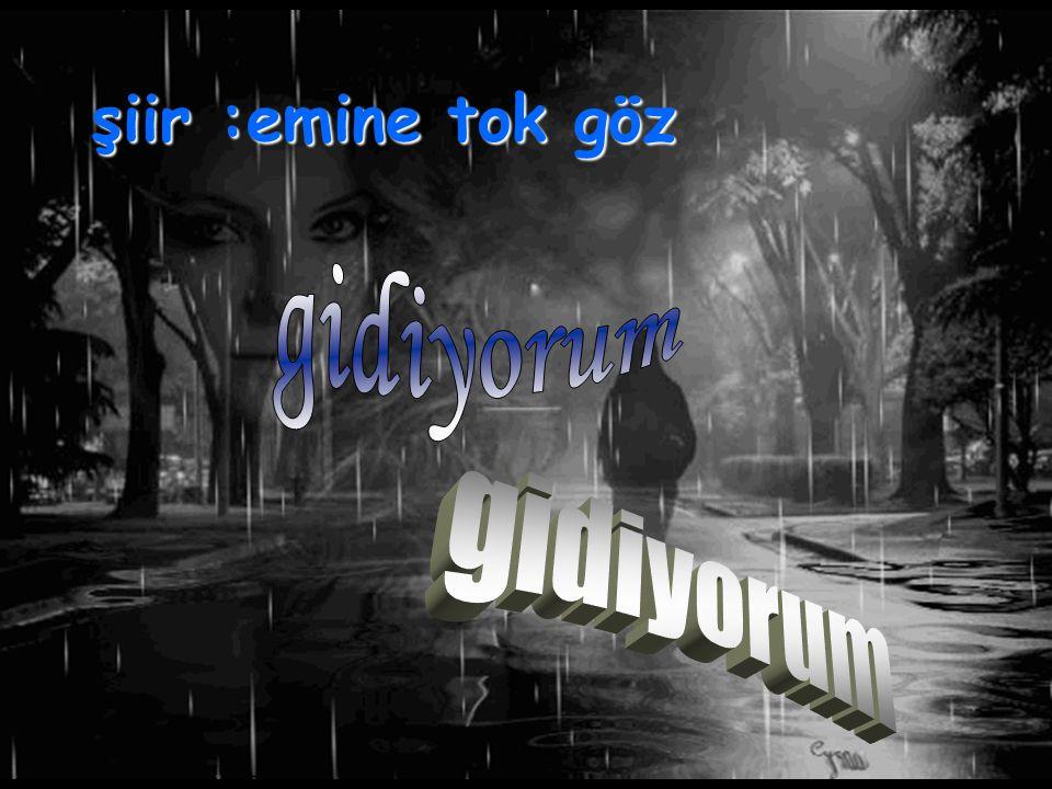 G i d i y o r u m 24.12.2009 Emine Tokgöz