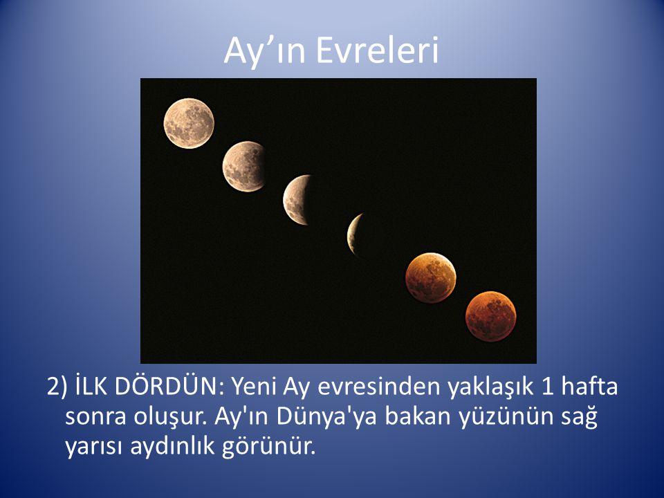 Ay'ın Evreleri 2) İLK DÖRDÜN: Yeni Ay evresinden yaklaşık 1 hafta sonra oluşur. Ay'ın Dünya'ya bakan yüzünün sağ yarısı aydınlık görünür.