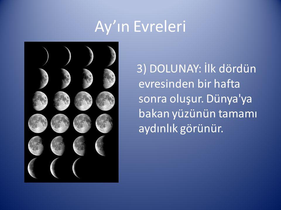 Ay'ın Evreleri 3) DOLUNAY: İlk dördün evresinden bir hafta sonra oluşur. Dünya'ya bakan yüzünün tamamı aydınlık görünür.