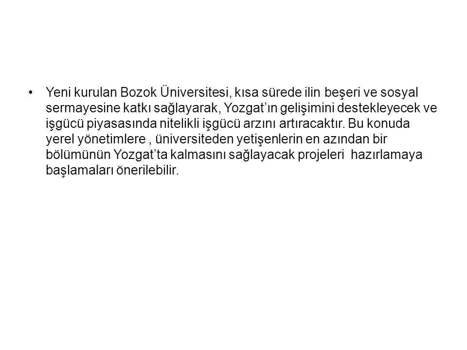Yeni kurulan Bozok Üniversitesi, kısa sürede ilin beşeri ve sosyal sermayesine katkı sağlayarak, Yozgat'ın gelişimini destekleyecek ve işgücü piyasası