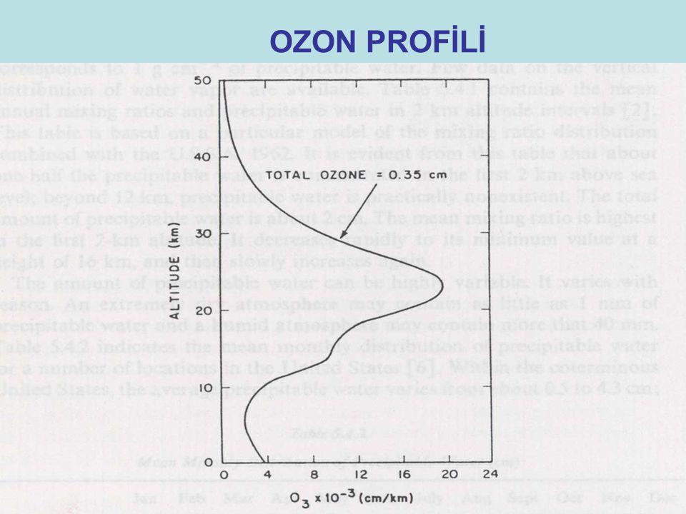 OZON PROFİLİ