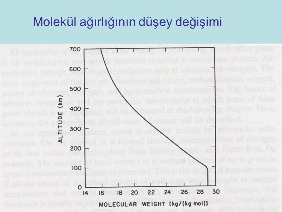 Molekül ağırlığının düşey değişimi