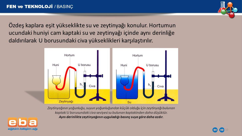 FEN ve TEKNOLOJİ / BASINÇ 10 Özdeş kaplara eşit yükseklikte su ve zeytinyağı konulur.