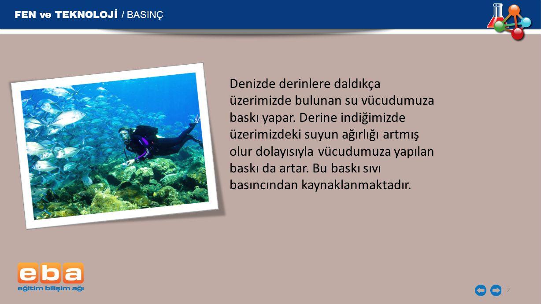 FEN ve TEKNOLOJİ / BASINÇ 2 Denizde derinlere daldıkça üzerimizde bulunan su vücudumuza baskı yapar.