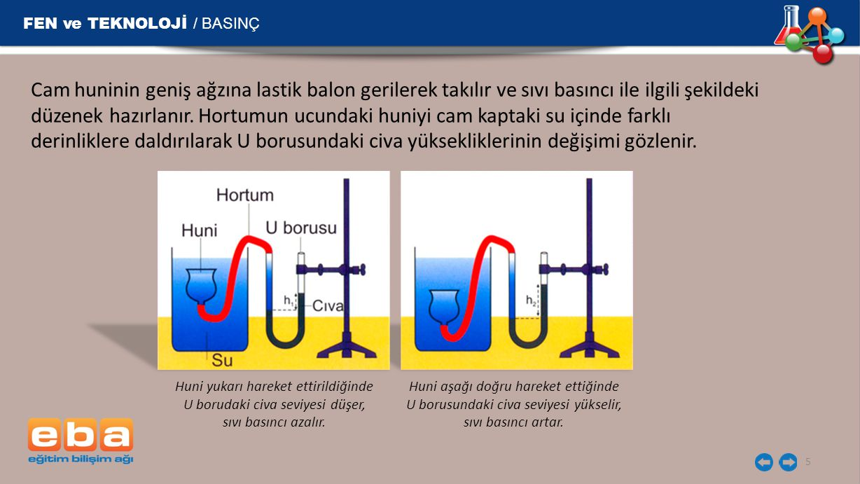 FEN ve TEKNOLOJİ / BASINÇ 5 Cam huninin geniş ağzına lastik balon gerilerek takılır ve sıvı basıncı ile ilgili şekildeki düzenek hazırlanır. Hortumun