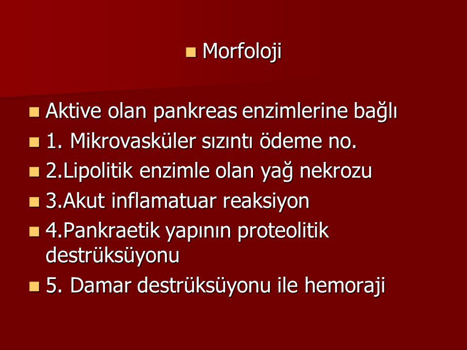 Morfoloji Morfoloji Aktive olan pankreas enzimlerine bağlı Aktive olan pankreas enzimlerine bağlı 1. Mikrovasküler sızıntı ödeme no. 1. Mikrovasküler