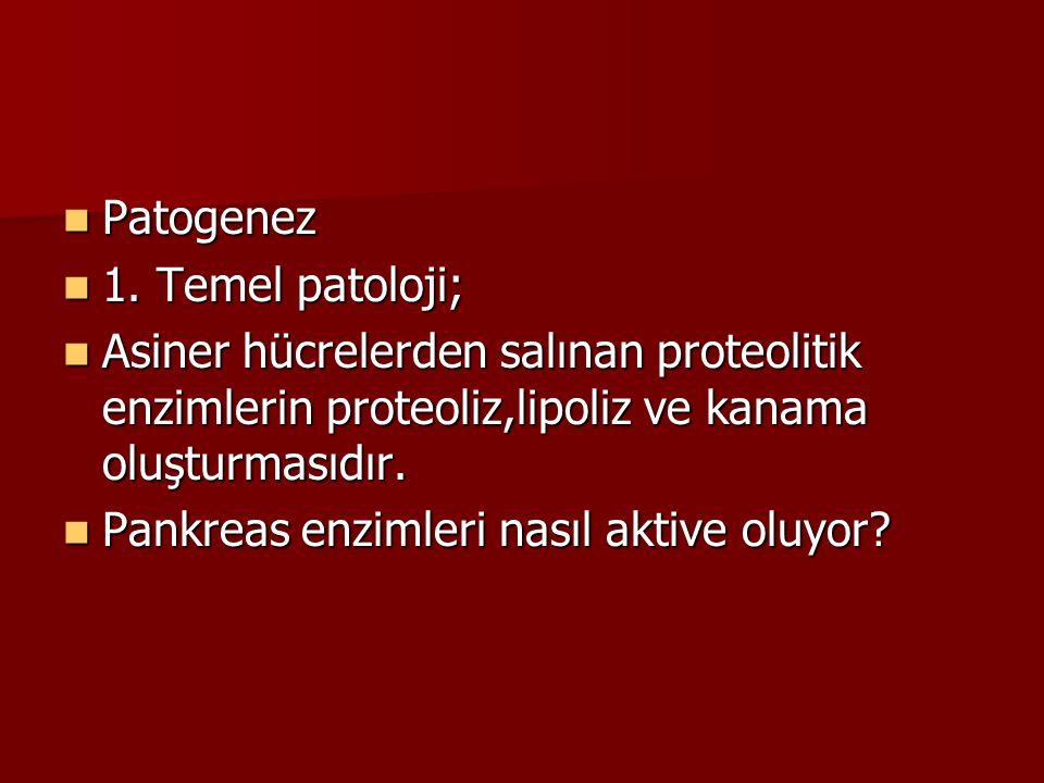Patogenez Patogenez 1. Temel patoloji; 1. Temel patoloji; Asiner hücrelerden salınan proteolitik enzimlerin proteoliz,lipoliz ve kanama oluşturmasıdır