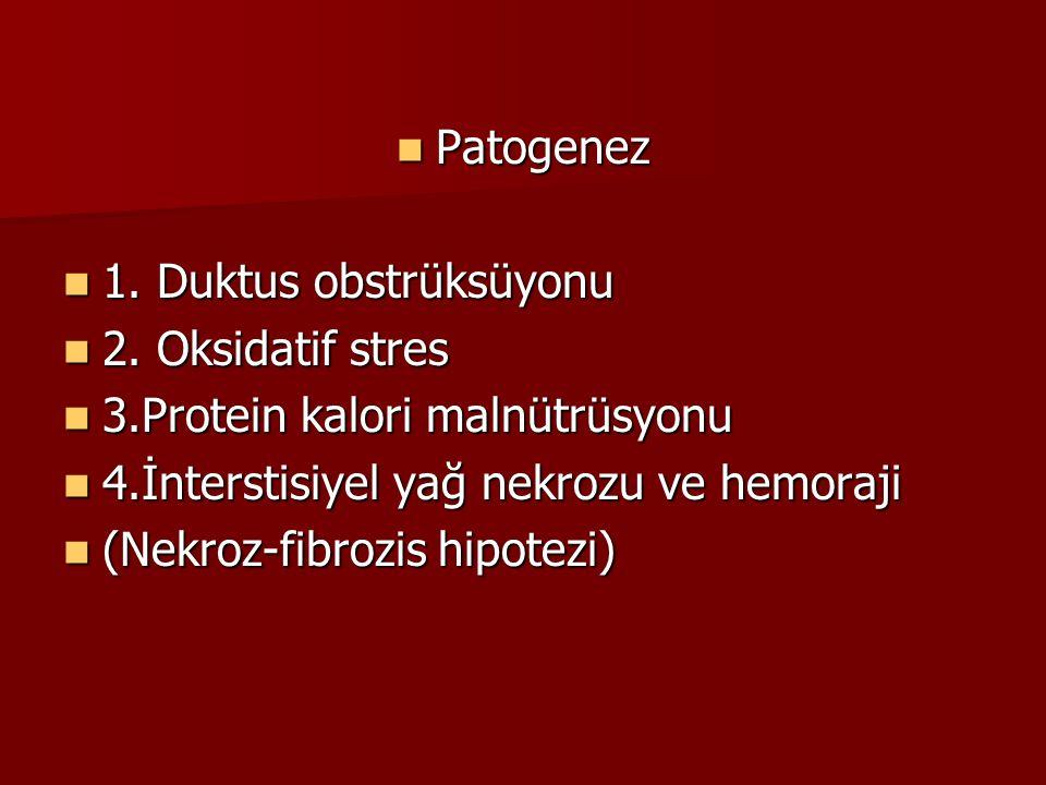 Patogenez Patogenez 1. Duktus obstrüksüyonu 1. Duktus obstrüksüyonu 2. Oksidatif stres 2. Oksidatif stres 3.Protein kalori malnütrüsyonu 3.Protein kal