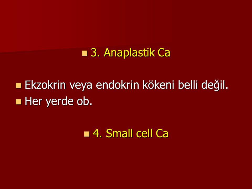3. Anaplastik Ca 3. Anaplastik Ca Ekzokrin veya endokrin kökeni belli değil. Ekzokrin veya endokrin kökeni belli değil. Her yerde ob. Her yerde ob. 4.