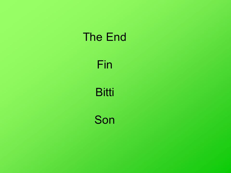 The End Fin Bitti Son