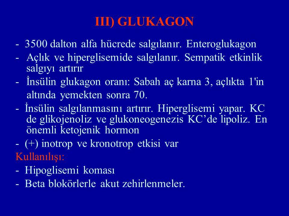 III) GLUKAGON - 3500 dalton alfa hücrede salgılanır. Enteroglukagon -Açlık ve hiperglisemide salgılanır. Sempatik etkinlik salgıyı artırır -İnsülin gl