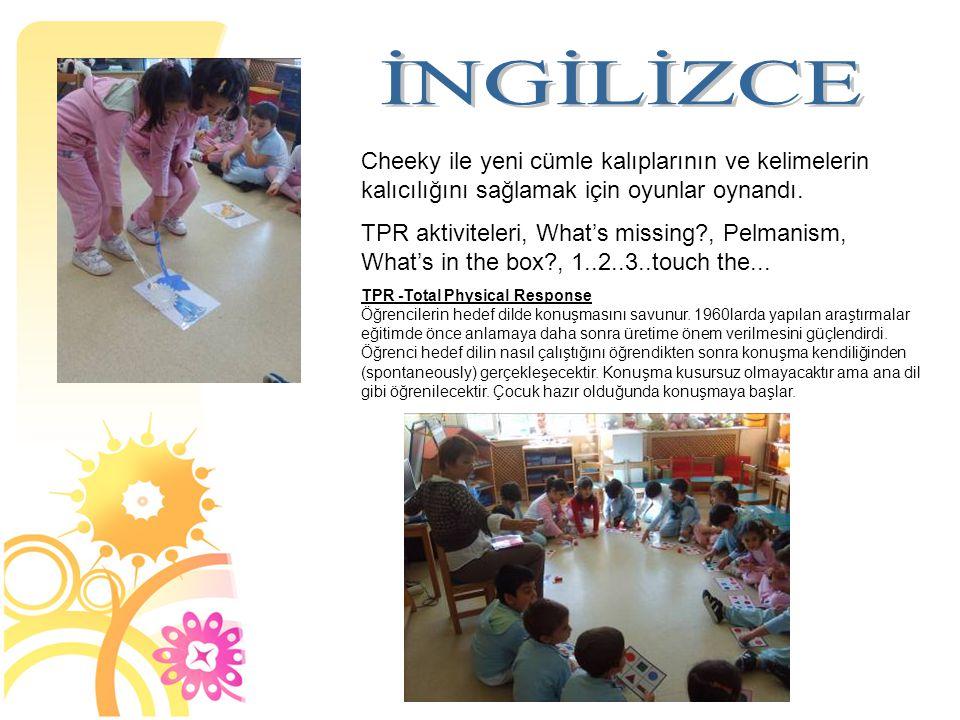 Cheeky ile yeni cümle kalıplarının ve kelimelerin kalıcılığını sağlamak için oyunlar oynandı. TPR aktiviteleri, What's missing?, Pelmanism, What's in