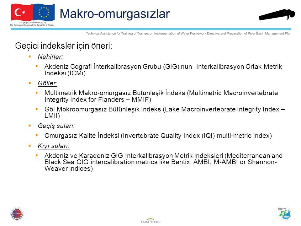 Makro-omurgasızlar Geçici indeksler için öneri:  Nehirler:  Akdeniz Coğrafi İnterkalibrasyon Grubu (GIG)'nun Interkalibrasyon Ortak Metrik İndeksi (