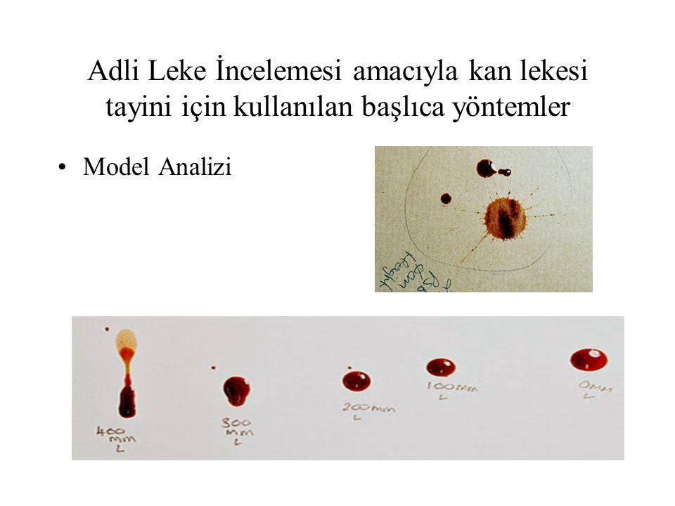 Adli Leke İncelemesi amacıyla kan lekesi tayini için kullanılan başlıca yöntemler Model Analizi
