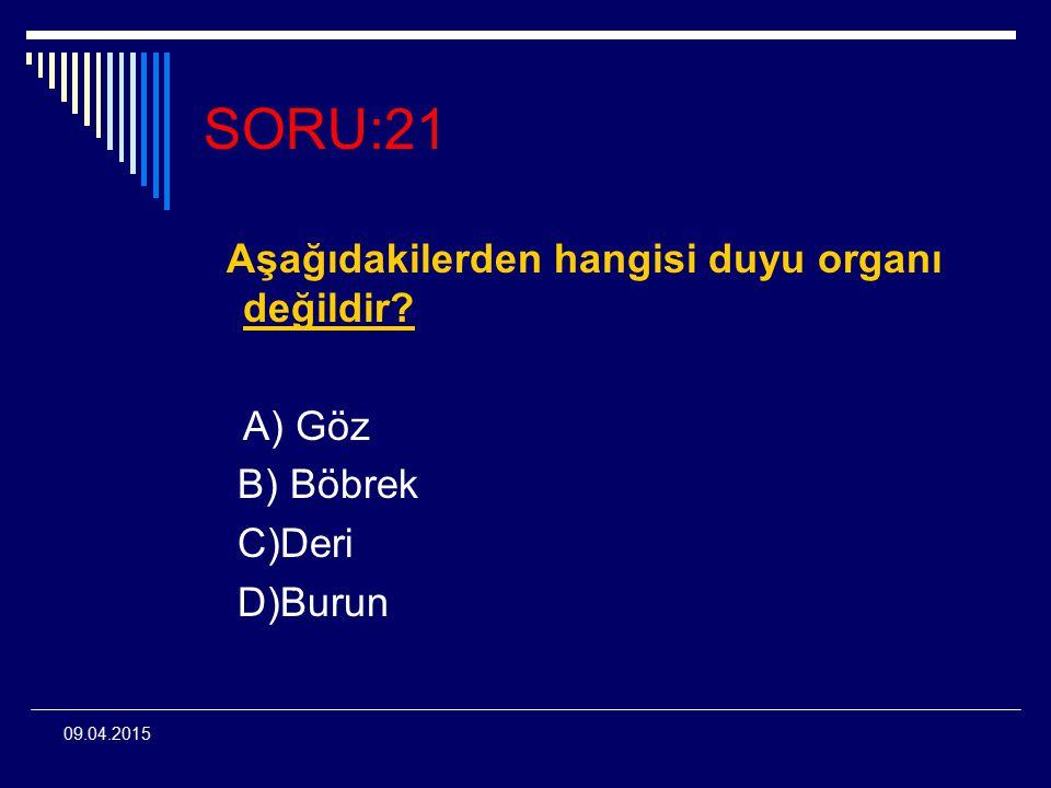 09.04.2015 SORU:21 Aşağıdakilerden hangisi duyu organı değildir? A) Göz B) Böbrek C)Deri D)Burun