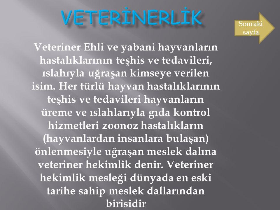 Veteriner Ehli ve yabani hayvanların hastalıklarının teşhis ve tedavileri, ıslahıyla uğraşan kimseye verilen isim. Her türlü hayvan hastalıklarının te