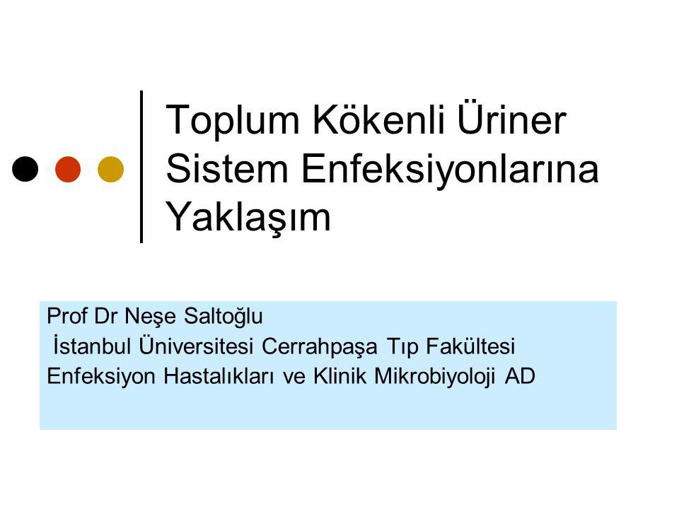 Toplum Kökenli Üriner Sistem Enfeksiyonlarına Yaklaşım Prof Dr Neşe Saltoğlu İstanbul Üniversitesi Cerrahpaşa Tıp Fakültesi Enfeksiyon Hastalıkları ve