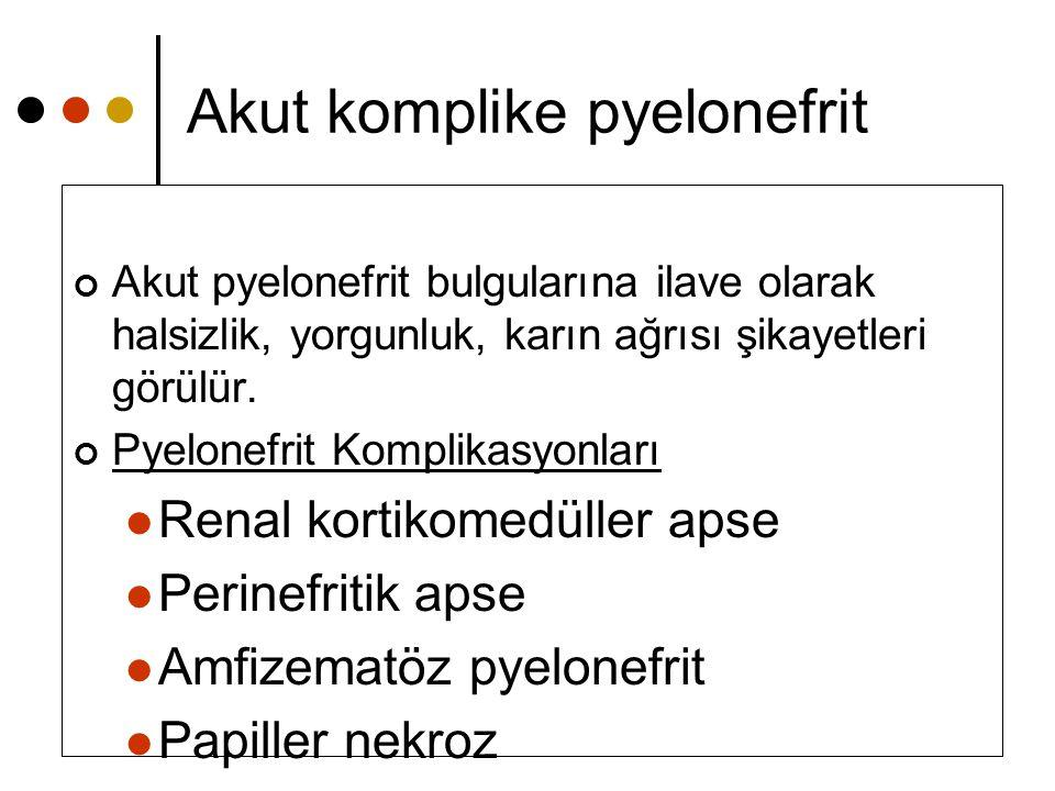 Akut komplike pyelonefrit Akut pyelonefrit bulgularına ilave olarak halsizlik, yorgunluk, karın ağrısı şikayetleri görülür. Pyelonefrit Komplikasyonla