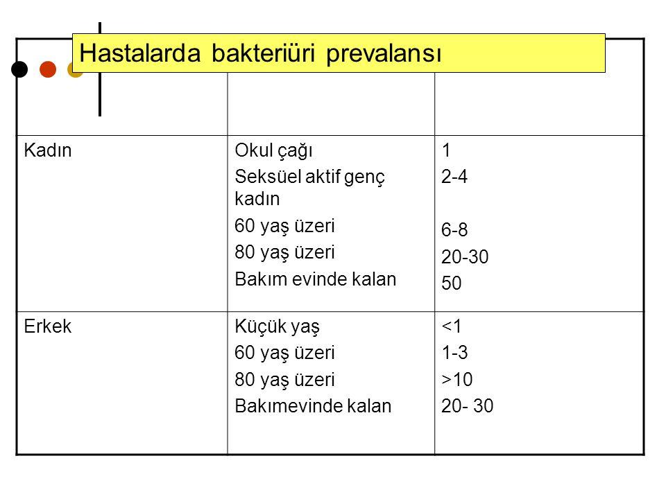 (%) KadınOkul çağı Seksüel aktif genç kadın 60 yaş üzeri 80 yaş üzeri Bakım evinde kalan 1 2-4 6-8 20-30 50 ErkekKüçük yaş 60 yaş üzeri 80 yaş üzeri B