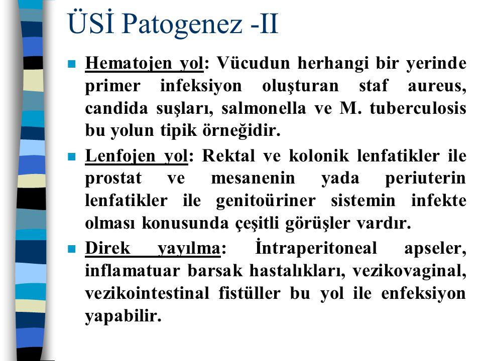 ÜSİ Patogenez -II n Hematojen yol: Vücudun herhangi bir yerinde primer infeksiyon oluşturan staf aureus, candida suşları, salmonella ve M. tuberculosi