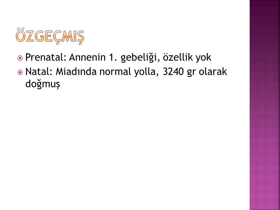  Prenatal: Annenin 1. gebeliği, özellik yok  Natal: Miadında normal yolla, 3240 gr olarak doğmuş