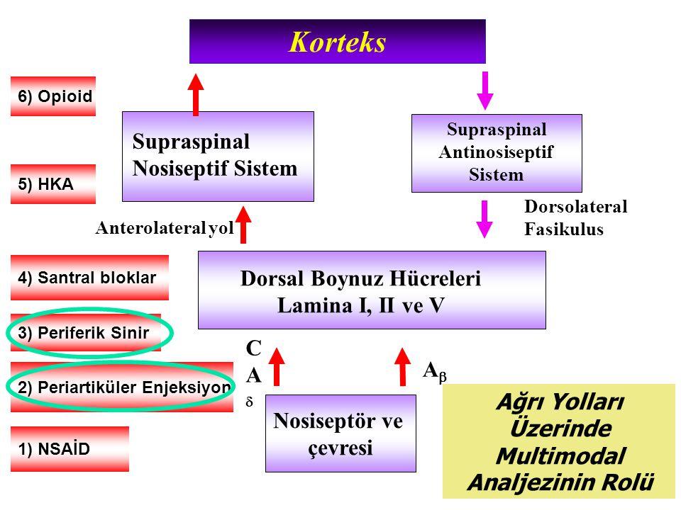 Multimodal Analjezi Preoperatif: Preemtif analjezi (lokal infiltrasyon, İV analjezik, Parasetamol) İntraoperatif Periartiküler enjeksiyon Spinal - Epidural Genel + Epidural Postoperatif: Analjezi (Epidural, Periferik sinir blokları, İV, HKA)