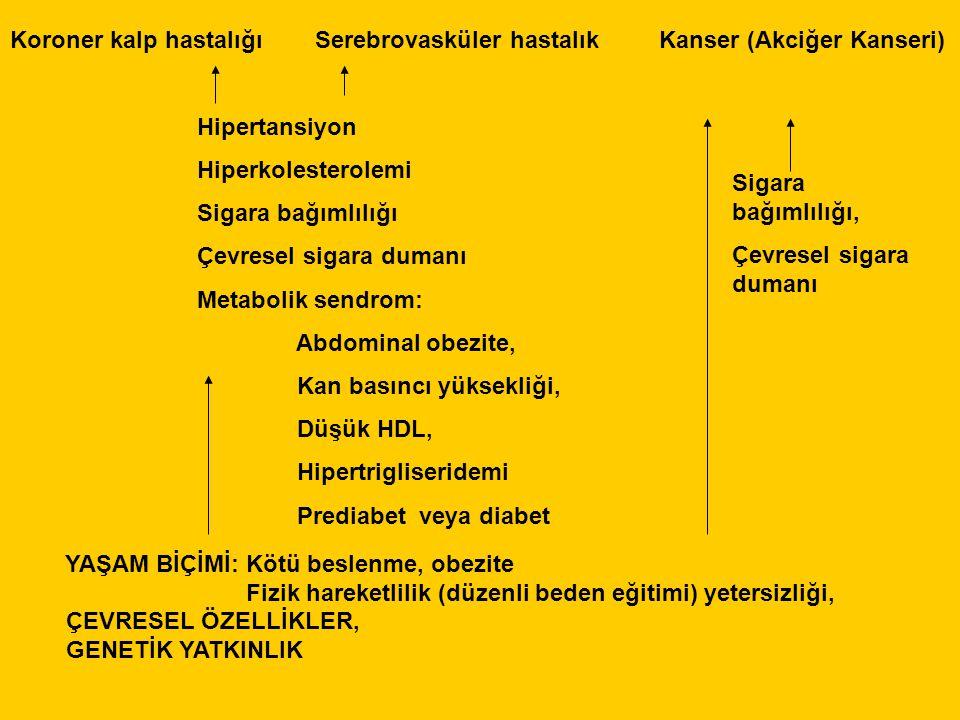 Koroner kalp hastalığı Serebrovasküler hastalık Kanser (Akciğer Kanseri) Hipertansiyon Hiperkolesterolemi Sigara bağımlılığı Çevresel sigara dumanı Metabolik sendrom: Abdominal obezite, Kan basıncı yüksekliği, Düşük HDL, Hipertrigliseridemi Prediabet veya diabet Sigara bağımlılığı, Çevresel sigara dumanı YAŞAM BİÇİMİ: Kötü beslenme, obezite Fizik hareketlilik (düzenli beden eğitimi) yetersizliği, ÇEVRESEL ÖZELLİKLER, GENETİK YATKINLIK