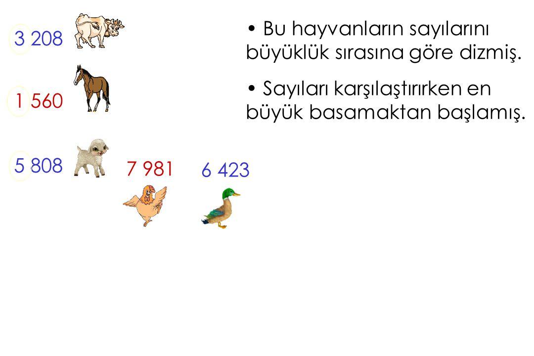 Bu hayvanların sayılarını büyüklük sırasına göre dizmiş. 3 208 1 560 5 808 Sayıları karşılaştırırken en büyük basamaktan başlamış. 7 981 6 423