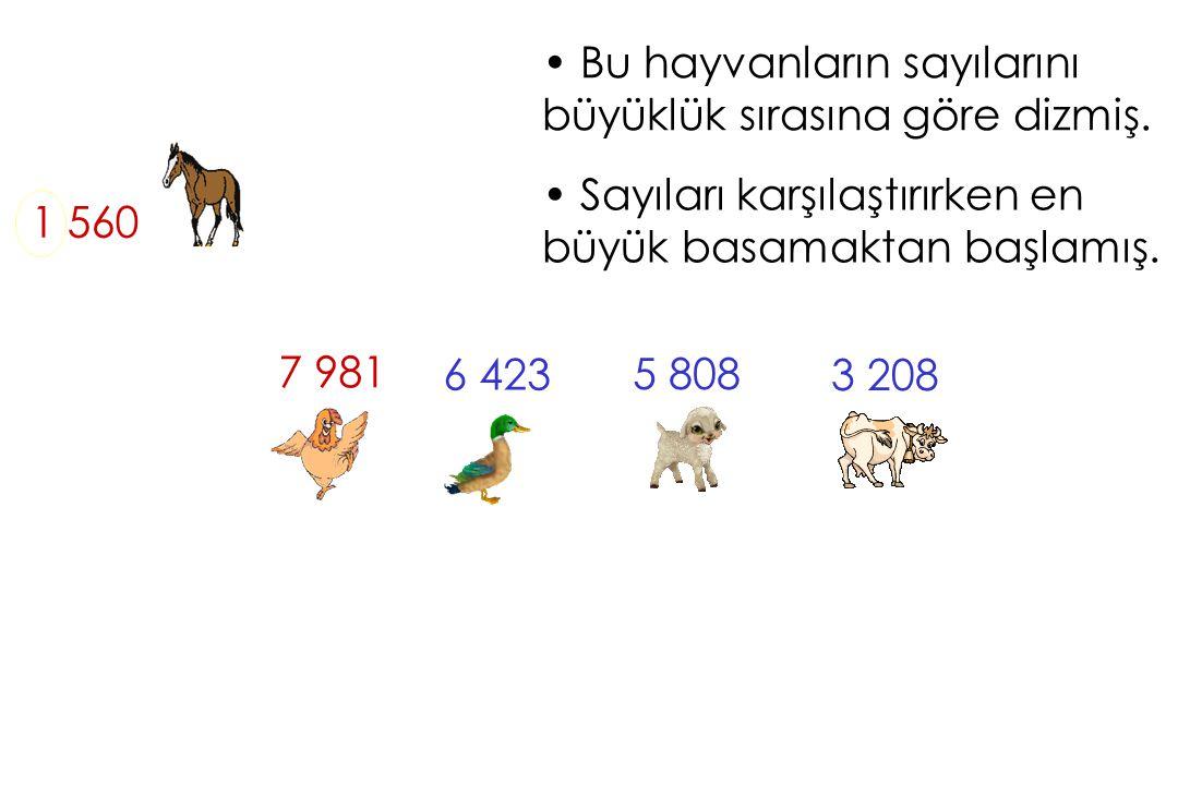 Bu hayvanların sayılarını büyüklük sırasına göre dizmiş. 1 560 Sayıları karşılaştırırken en büyük basamaktan başlamış. 3 208 5 808 7 981 6 423