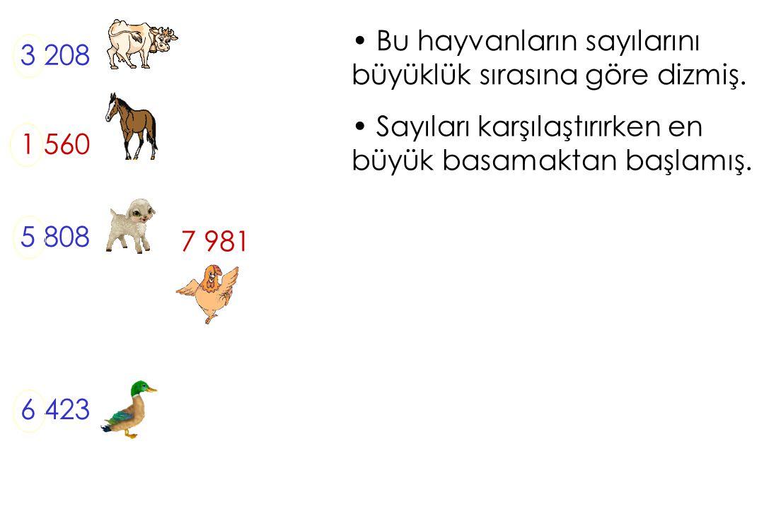 Bu hayvanların sayılarını büyüklük sırasına göre dizmiş. 3 208 1 560 5 808 6 423 Sayıları karşılaştırırken en büyük basamaktan başlamış. 7 981
